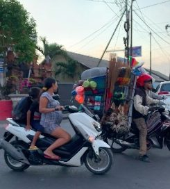 Driver in Bali