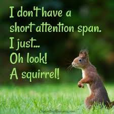 I don't have a short attention span. I just... Ok Look! A squirrel!
